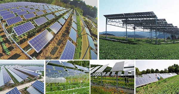 Trang trại năng lượng mặt trời (Solar Farm / Community Solar) là gì?